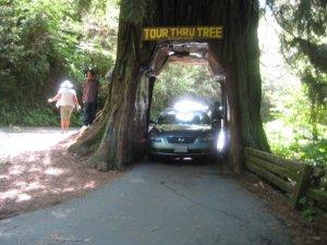 A controversial, but fun tourist spot.