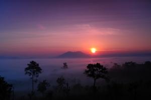 Image Courtesy of Piyaphon, published on 18 May 2011, from http://www.freedigitalphotos.net