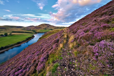 Image courtesy of Serge Bertasias Photography. Beautiful Landscape of Scottish Nature, from http://www.freedigitalphotos.net.