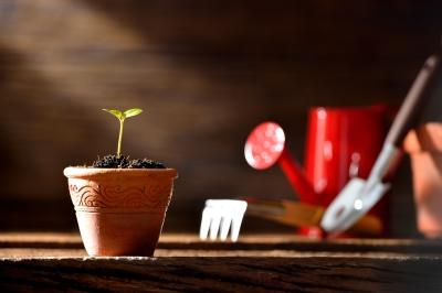 Image courtesy of amenic181, from http://www.freedigitalphotos.net